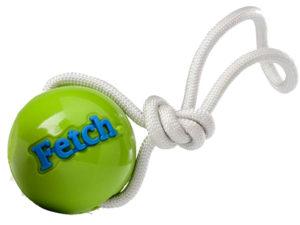 Würfball für Hunde - Fetch Ball von Planet Dog
