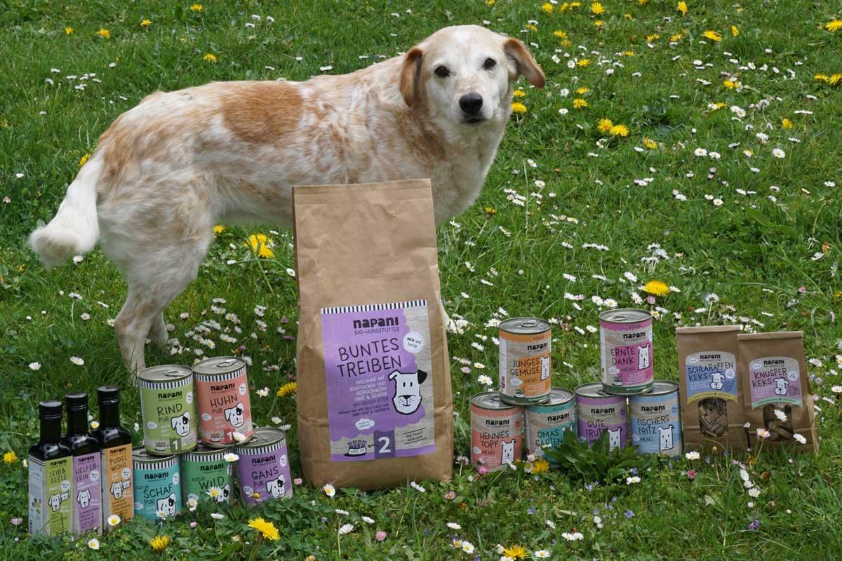 Napani Tierfutter - Hundemodell mit Produkten