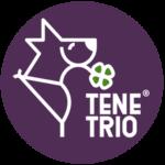 TeneTrio - Logo