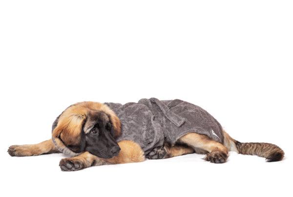 Bademantel für Hunde - grau von LILL's