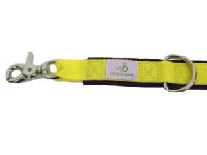 Führleine Hunde aus Used Denim und buntem Gurtband