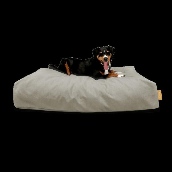 BUDDY Hundebett in Beige - mit Hundemodell