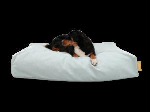 SKY - Hundebett BUDDY mit einem Hundemodell