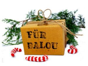 Geschenke für Hunde und Katzen individualisierbar