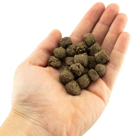 Futterproben für den Hund - Trockenfutter von Tenetrio
