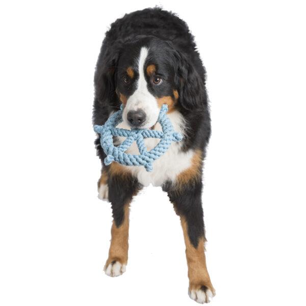Tauspielzeug für den Hund: Steuerrad von Laboni
