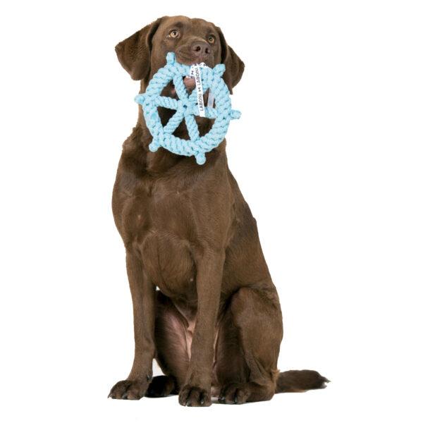 Steuerrad von Laboni - Tauspielzeug Hund