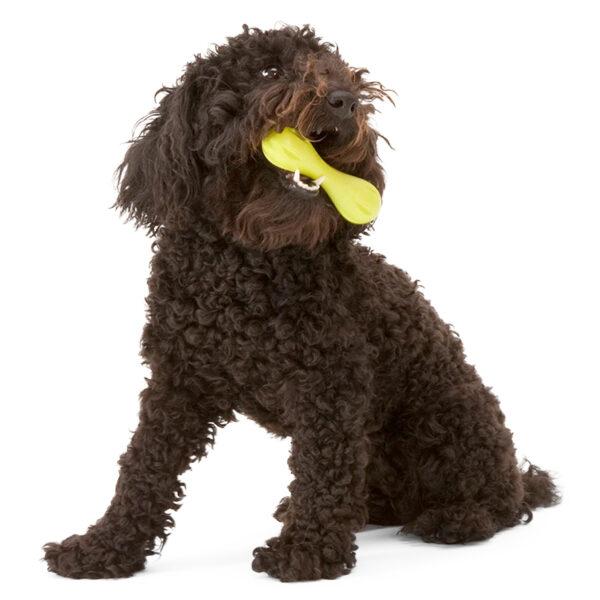 Hundespielzeug Knochen - West Paw Hurley in Grün