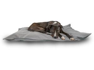 Hundekissen: waschbar & bio